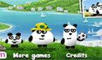 Три Панды в Бразилии