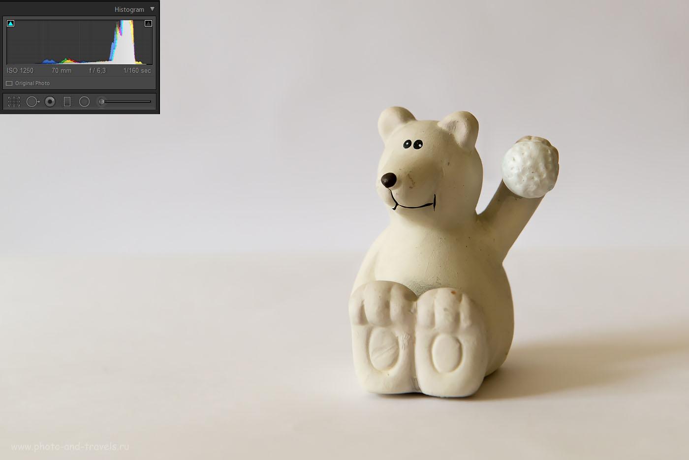 Фото 8. Белый медведь. Пример снимка, на котором гистограмма ушла вправо