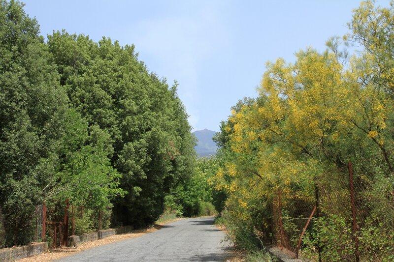 Сицилия, дорога наЭтну