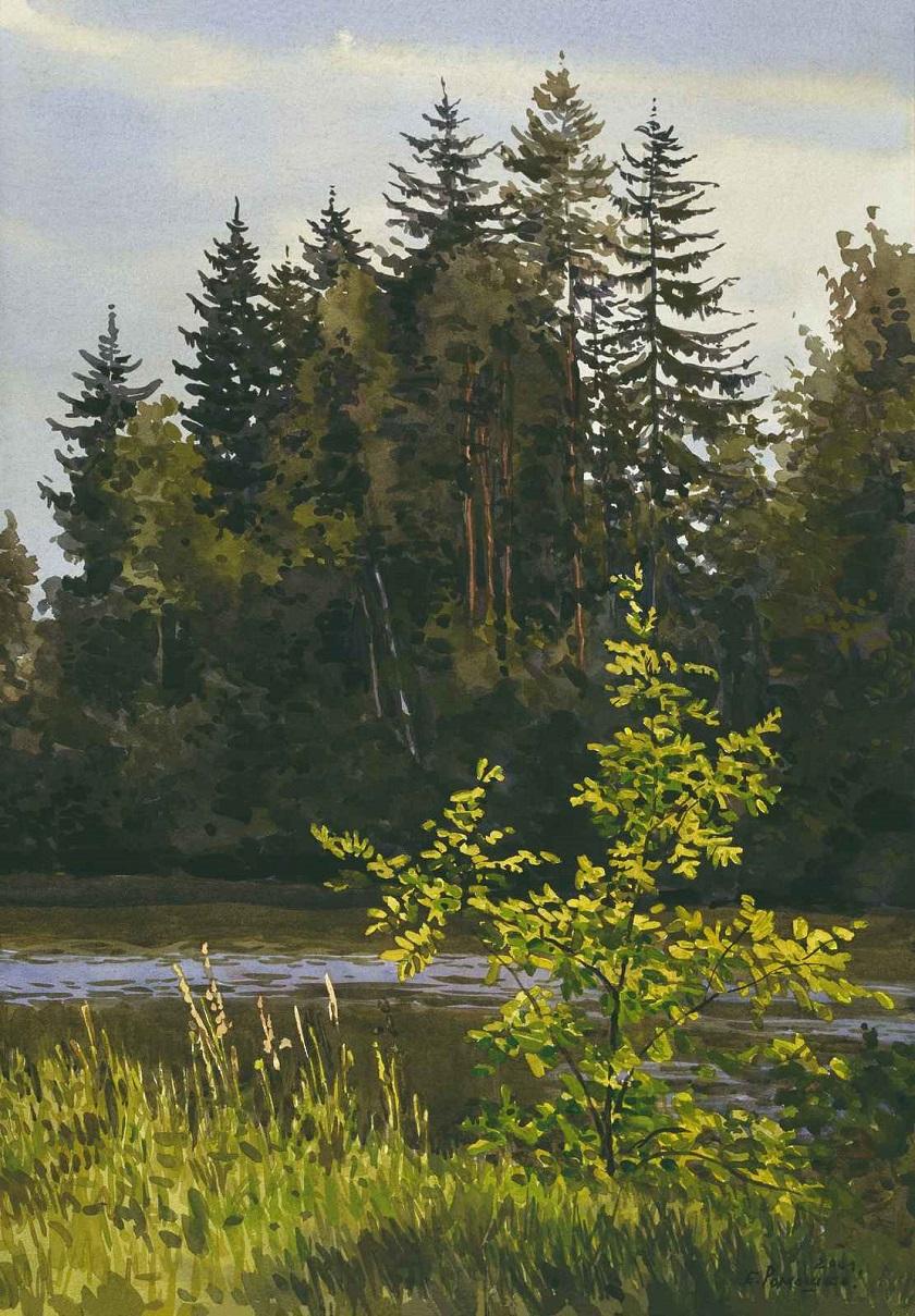 На реке Мсте.jpg