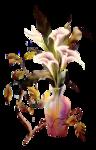 «восточная красота» 0_61aea_e9c755c3_S