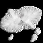 «маленькие сокровища нежности» 0_63af8_b0c8471d_S