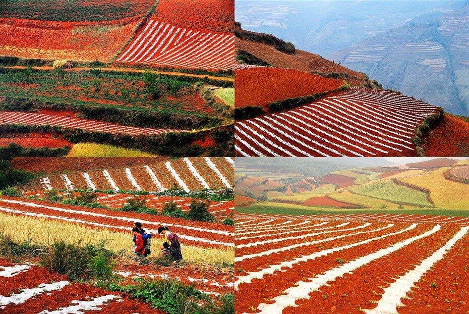 Китай, фотографии области Dongchuan
