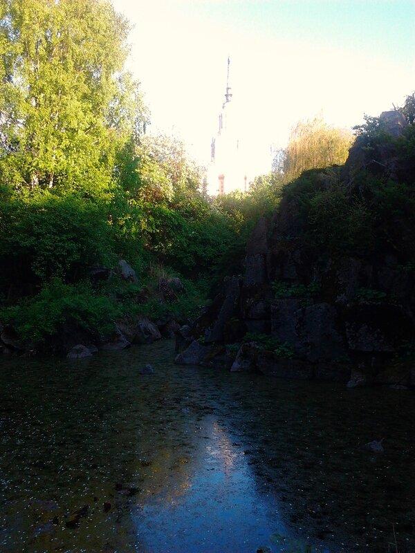 Ботсад МГУ-11