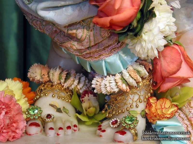 �������� ����� �������� ��� ����������� (��� ������), ���� ������  ������������� �����, ������ (Sri Gokulananda Feet)