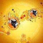 «оранжевый мир»  0_6d6b7_7cad1583_S