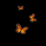 Скрап «Фантазия»  0_6a61f_733173bd_S