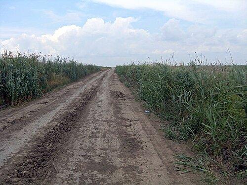 001. Велопутешествие по Кубани.2009. (312).jpg