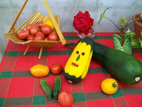 С урожайных грядок