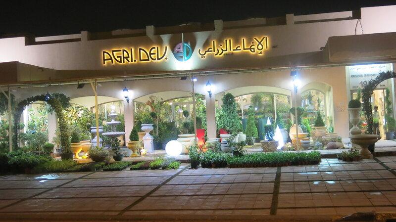 Оранжерея. Опознаем цветы и их названия! Кувейт