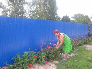Прогулка по улице Победы. Цветам Веры Алексеевны Даниличевой уже тесно во дворе!