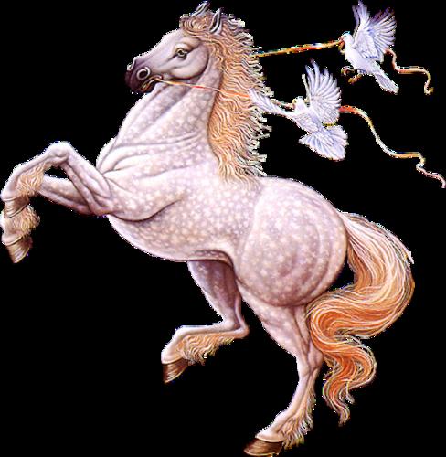 Открытка, открытки с изображением лошади