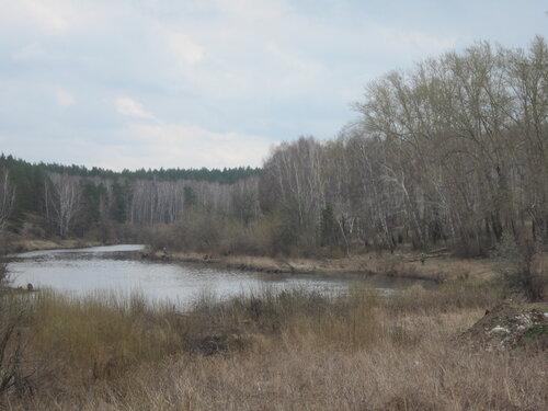 Река Миасс вместе впадения Зюзелги