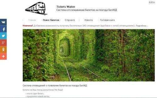Программистка из Светлогорска разработала бесплатное приложение для отслеживания дефицитных билетов