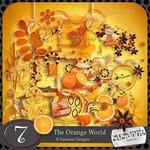 «оранжевый мир»  0_6d682_b1330304_S