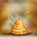 «сладкий мед» 0_6f07c_80e62962_S