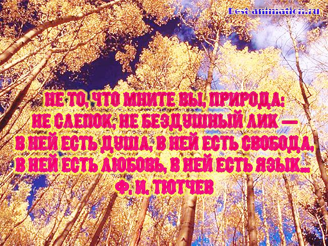 Цитаты великих людей - Сила природы, Красота природы – Не то, что мните вы, природа...