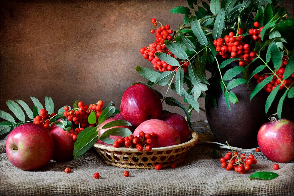картинки рябины яблок семья, заказывая фотосессию