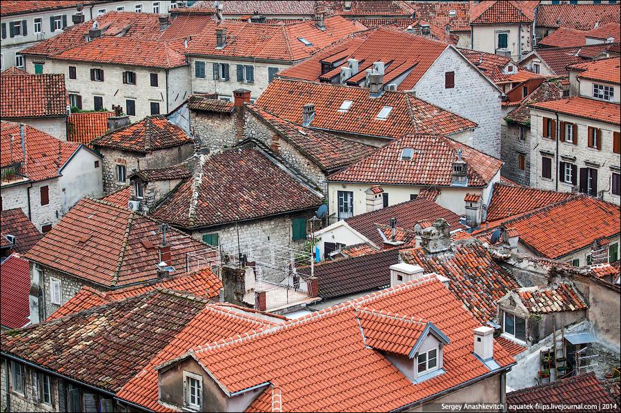 Крыши, как мысли