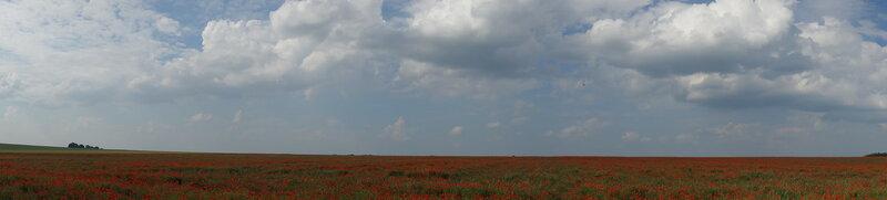 О жизни: Краски природы: красный