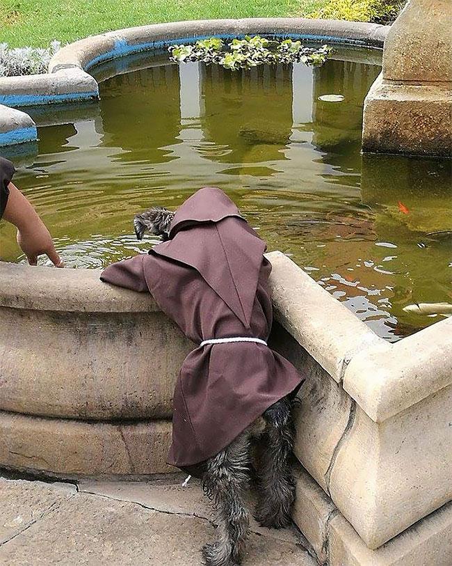 «Вот брат Кармело проповедует рыбам», — написал монах Каспер Мариуш Капрон в подписи к одной из фото