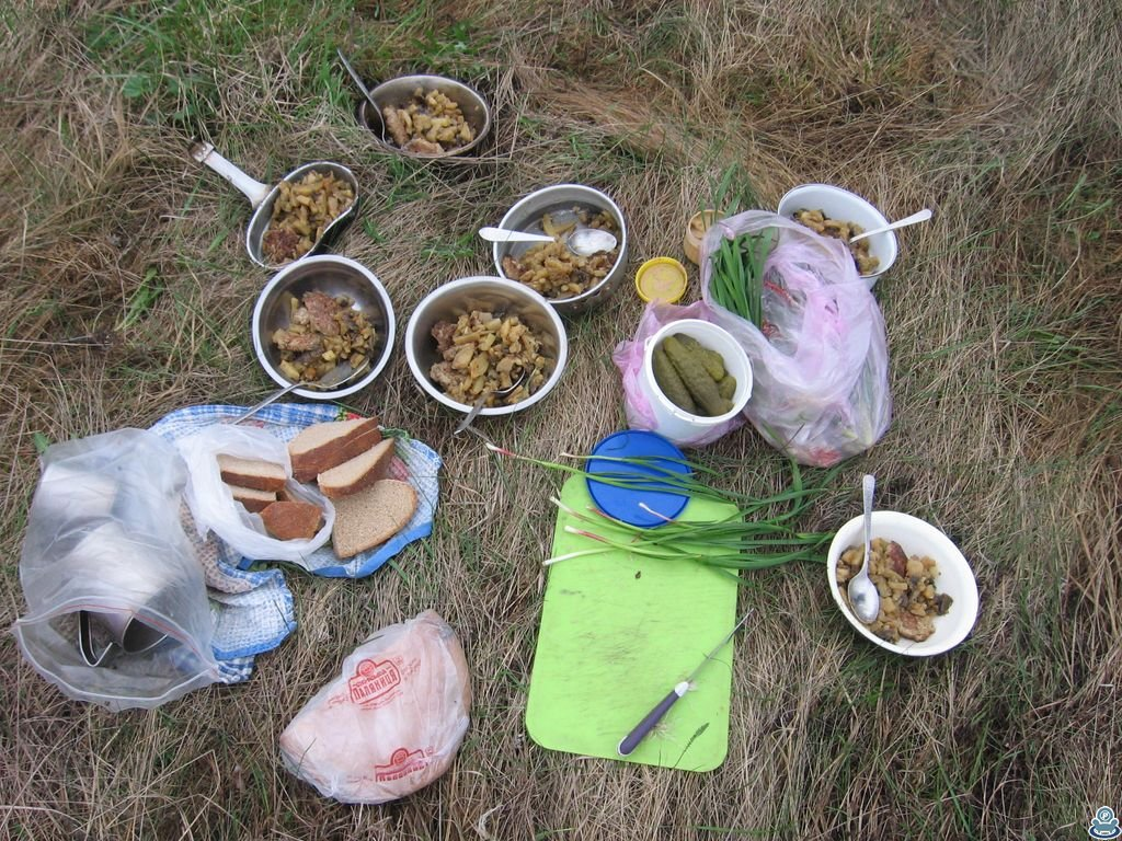 Завтрак на берегу Боромли