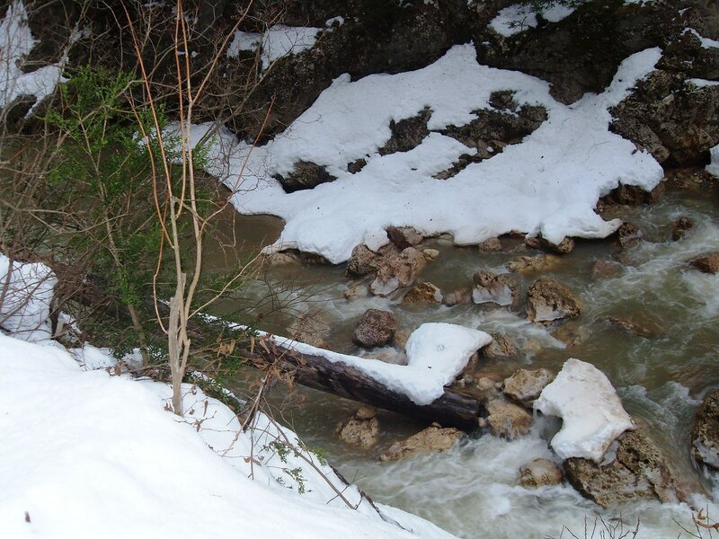 У реки, снег, течение, ветви ...SDC18571.JPG