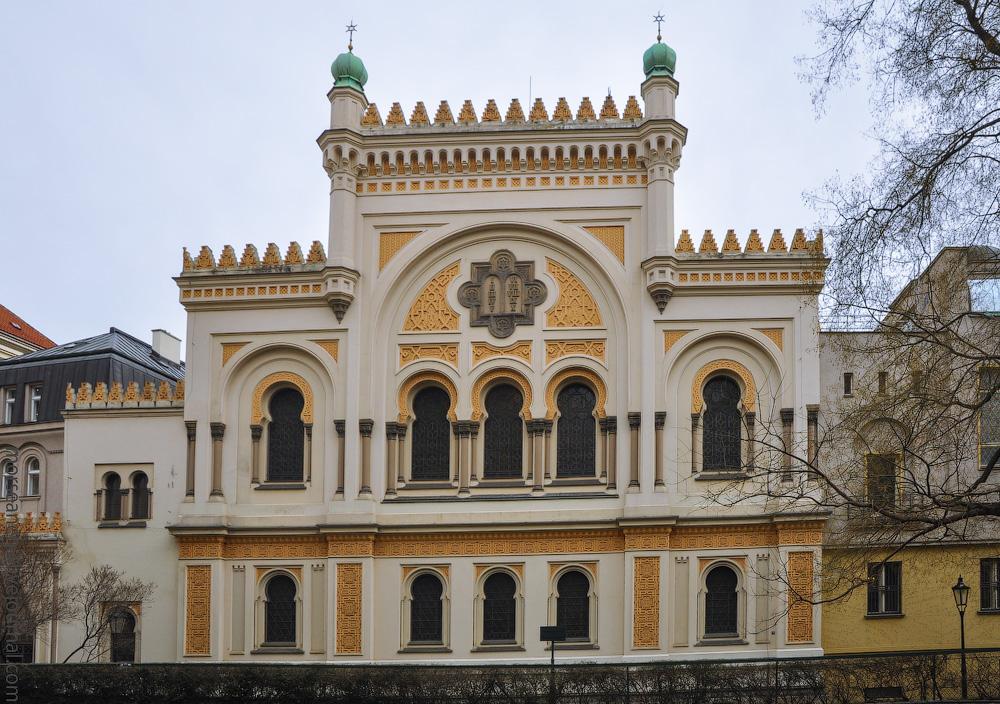 Pragkrugodnevka-(28).jpg