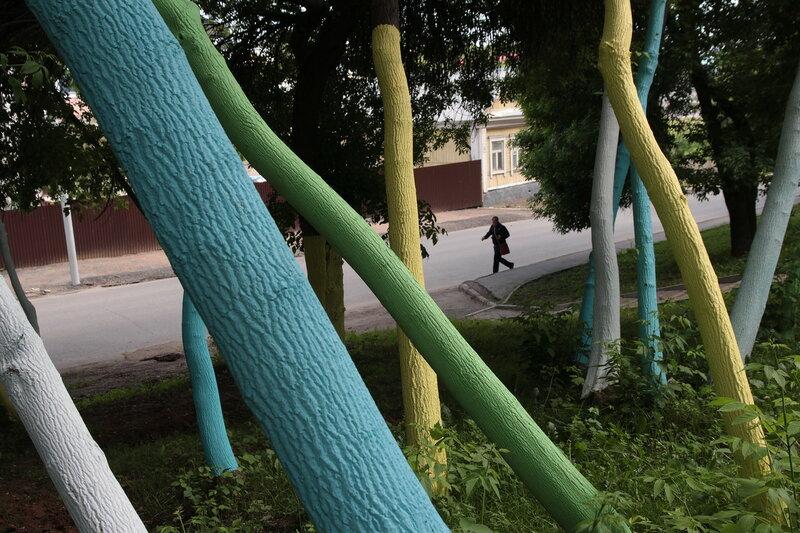 Цветные деревья