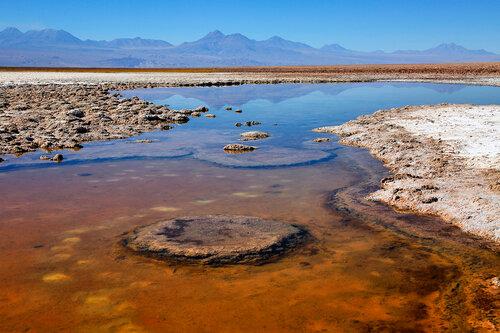 Соляные поля Атакамы