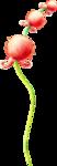 ldavi-wildwatermelonparty-melonberryflower1.png