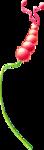 ldavi-wildwatermelonparty-melonberryflower2.png