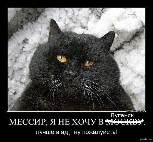 мессир луганск