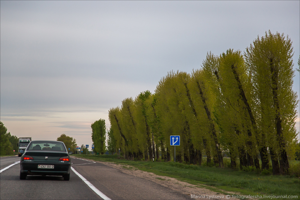 Моска-Орша-Гомель-Ноябрьск