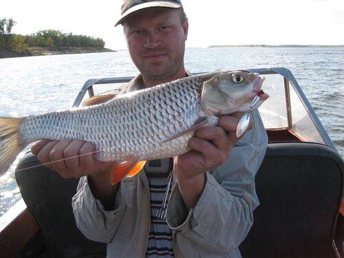 фаворит донское рыбалка