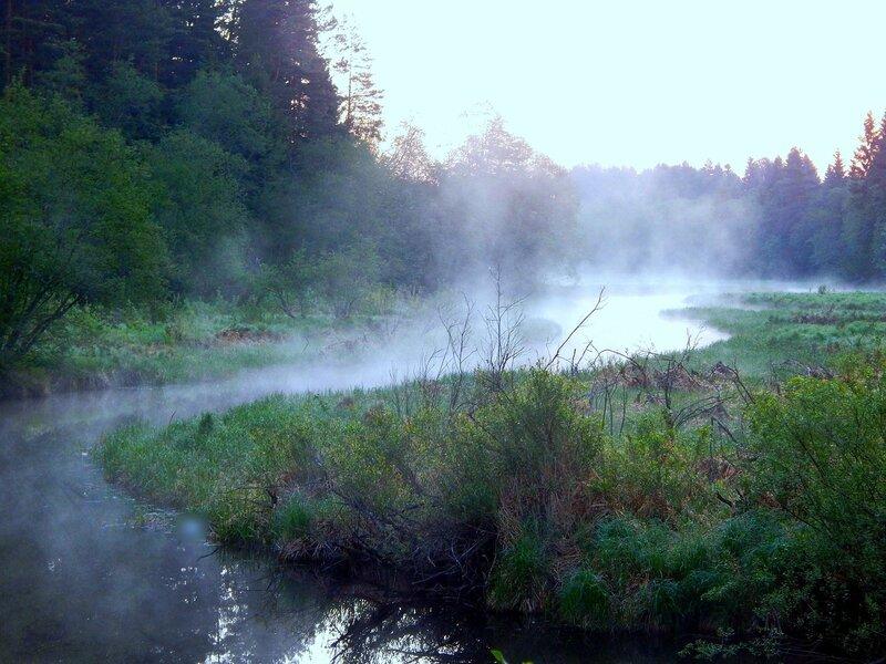 Утренняя речка.
