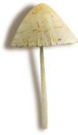 catherinedesigns_R-C23_Mushroom4__sh.png