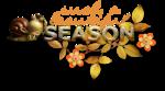 cajoline suchabeautiful season