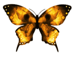 DBV Gold Rush element (46).png