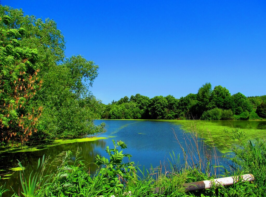 Синь неба - в воде...
