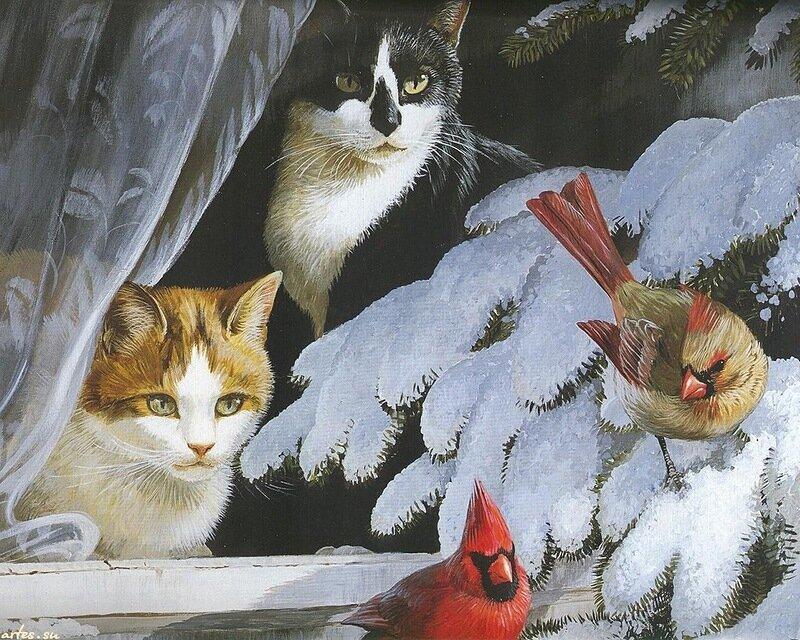 Кошки и птицы.jpg