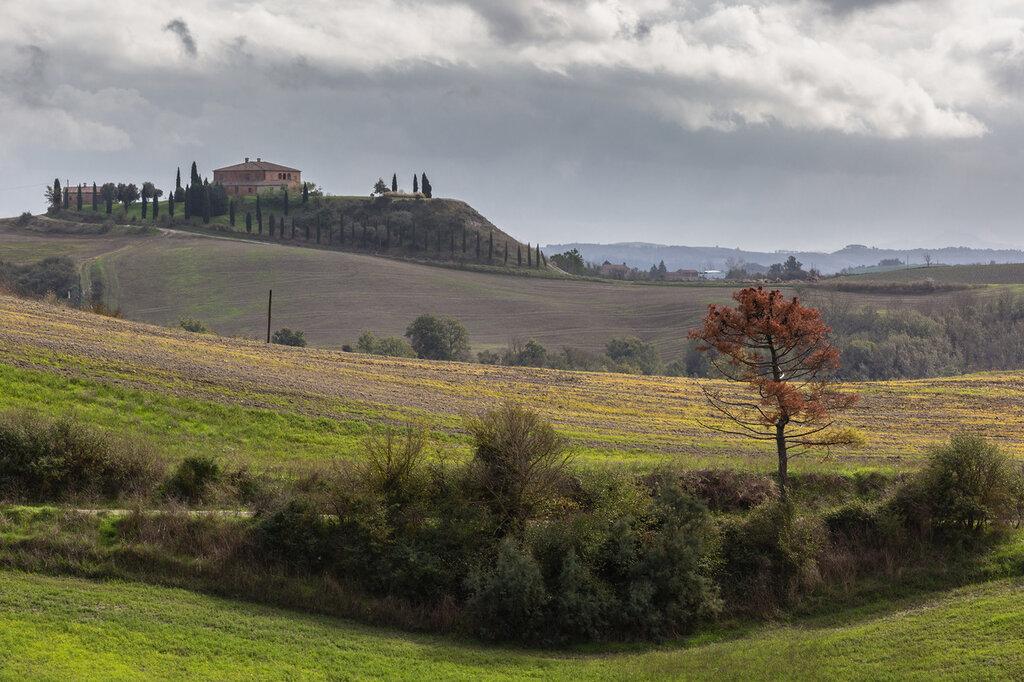 tuscany-9561.jpg