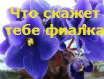 1363429576736131609.jpg