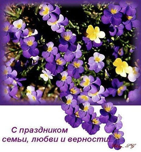Картинки с праздником семьи, любви и верности. Цветы открытка поздравление картинка