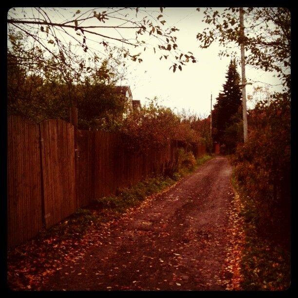 Осень на дачной улице