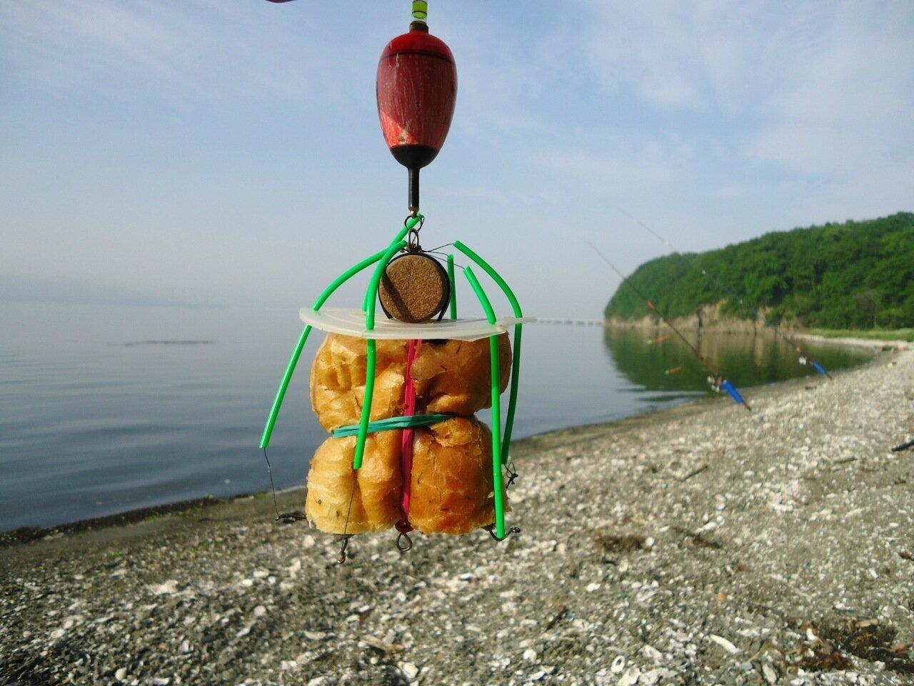 Рыбалка без границ ловля карпа и толстолобика Рыбалка всегда будет удачной