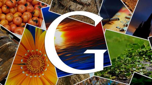 google-images3-ss-1920-800x450.jpg