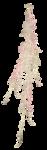 Scrap - Petite Elyne 0_73b52_41c16704_S