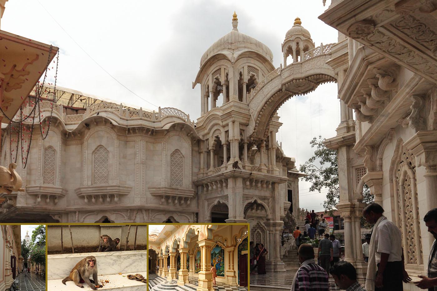Фотография 15. Путешествия по Индии. Храм Шри Кришна-Баларама в городе Агра
