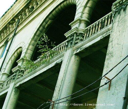 Дерево, растущее на балконе дворца